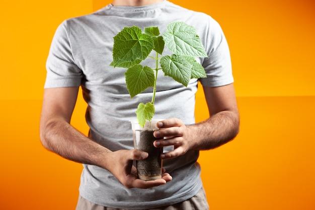 Een man met een pot met een boomspruit