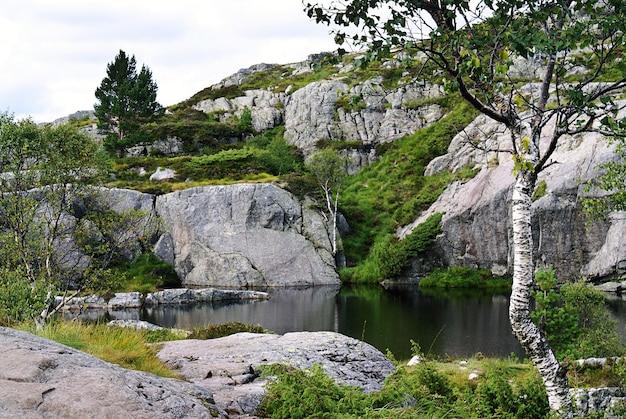 Een meer met de weerspiegeling van bomen omgeven door rotsformaties in preikestolen, noorwegen