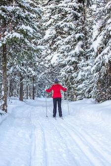 Een meisje in een rood jasje gaat in de winter skiën in een besneeuwd bos.