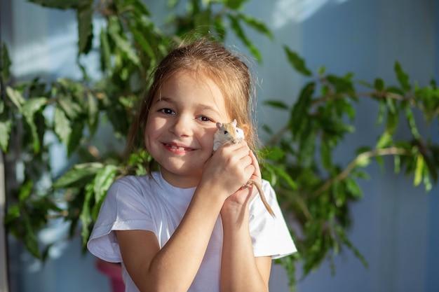 Een meisje in een wit t-shirt heeft een mongoolse woestijnrat op haar hand. baby- en huishoudelijke muisonderhoud