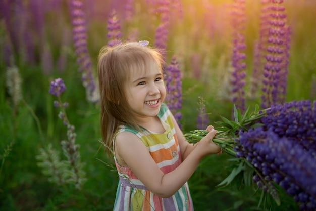 Een mooi klein meisje lacht en zwaait met een bos lupines in een veld met bloemen bij zonsondergang