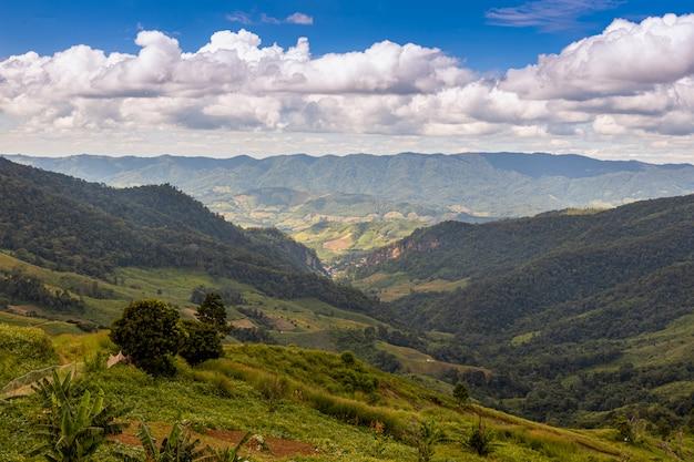 Een mooi landschap van chiang rai-provincie, thailand