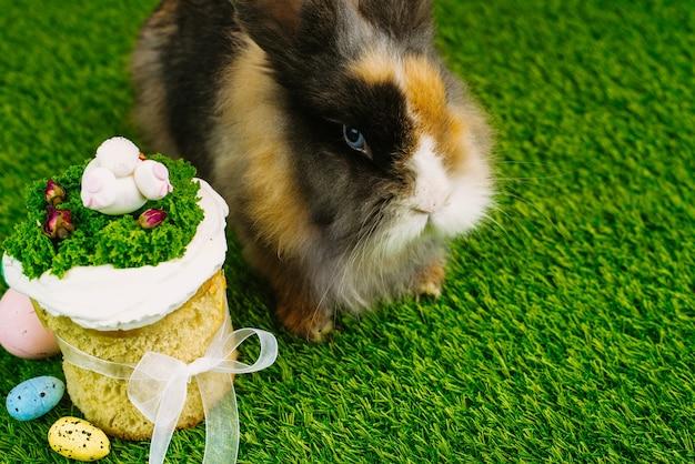 Een mooi pluizig konijn ligt op het groene gras naast beschilderde eieren en paaskoekjes