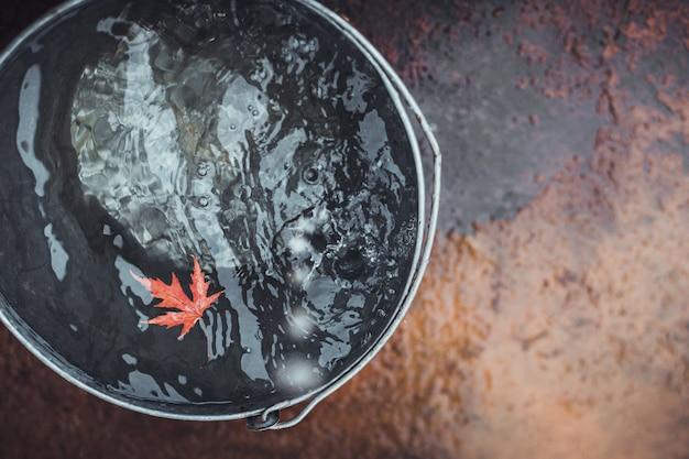 Een mooi rood esdoornblad drijft in een tinnen emmer op het wateroppervlak, waarop regendruppels vallen. bovenaanzicht, kopie ruimte.