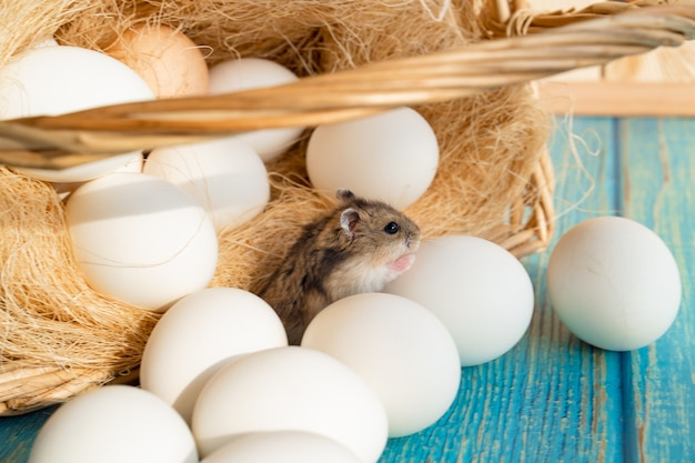 Een muis in een mandje met witte eieren op een turquoise houten tafel. de producten van de boerderij.