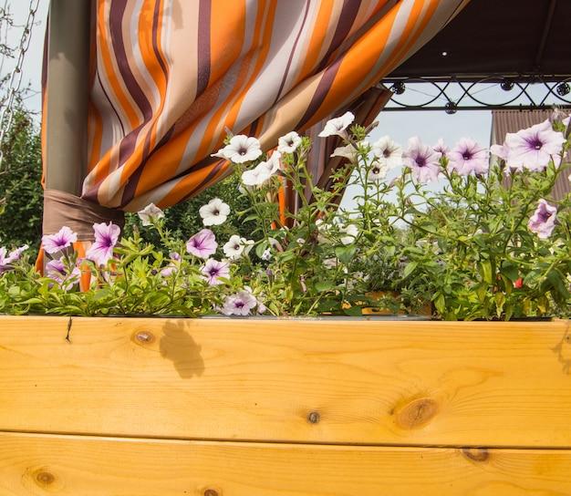 Een nieuwe houten kist met plantenbakken met tuinpetunia bloemen op de achtergrond van een open tuinveranda met een oranje luifel.