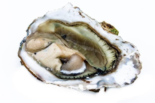 Een oester