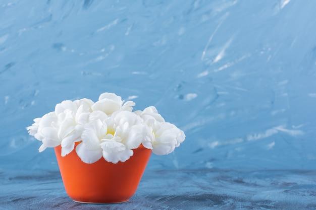 Een oranje bloempot met witte rozen op blauw.