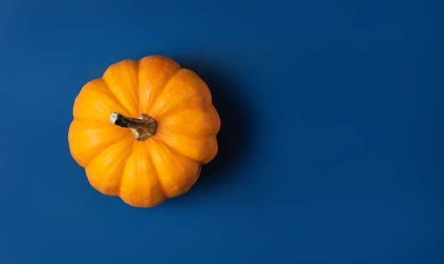 Een oranje kleine pompoen op klassiek blauw.