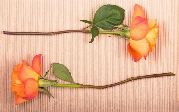Een oranje roos op een bruin papieren oppervlak