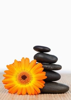Een oranje zonnebloem en een zwarte stenenstapel