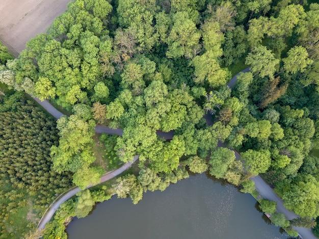 Een oud bos met jonge groene tuinen en droge bomen, paden en wegen met een meer. het concept van behoud van natuur en ecosysteem. van bovenaf genomen door drones