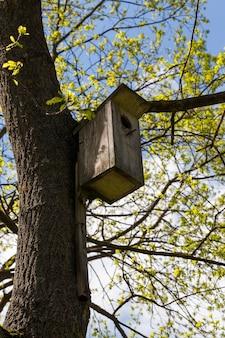 Een oud houten vogelhuisje