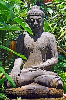 Een oud standbeeld van een verlaten boeddha in het struikgewas van de equatoriale jungle.
