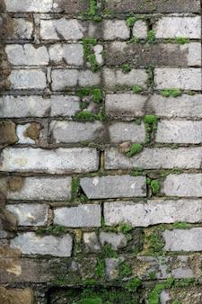 Een oude bakstenen muur van een woongebouw begroeid met mos