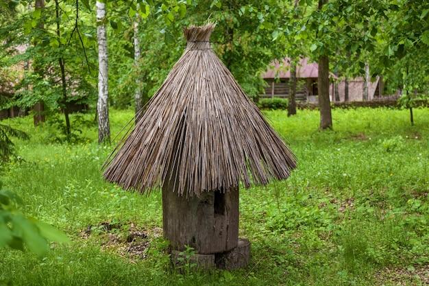Een oude bijenkorf in het midden van een open plek in het bos. gemaakt van een stam van een boom met een rieten dak, heette een dummy of een plank