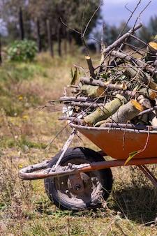 Een oude kruiwagen vol brandhout klaar voor de winter