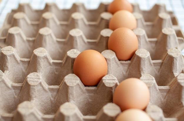 Een paar bruine eieren tussen de lege cellen van een grote kartonnen zak, een kippenei als waardevol voedzaam product