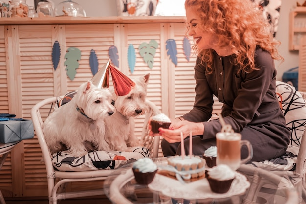 Een paar cupcakes geven. liefdevolle roodharige, krullende eigenaar van twee witte honden die ze wat cupcakes geeft
