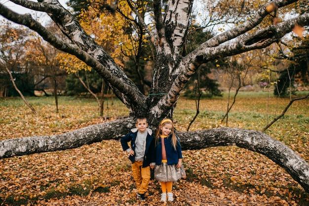Een paar kinderen poseren in herfst park