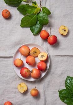 Een paar sappige mini-appels in een witte plaat op een natuurlijk linnen tafelkleed