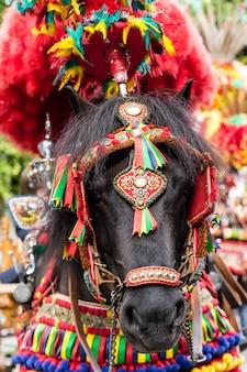 Een paard met traditionele decoraties en kleuren sicilianen op een feestelijke zondag voor kinderen