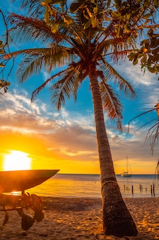 Een palmboom op het strand bij zonsondergang vanaf west end beach, roatan island. honduras