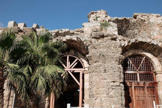 Een palmboom tegen de achtergrond van een oud oud grieks gebouw dat eeuwenlang is verwoest