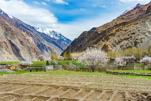 Een panoramisch uitzicht op de turtuk-vallei en de rivier de shyok.