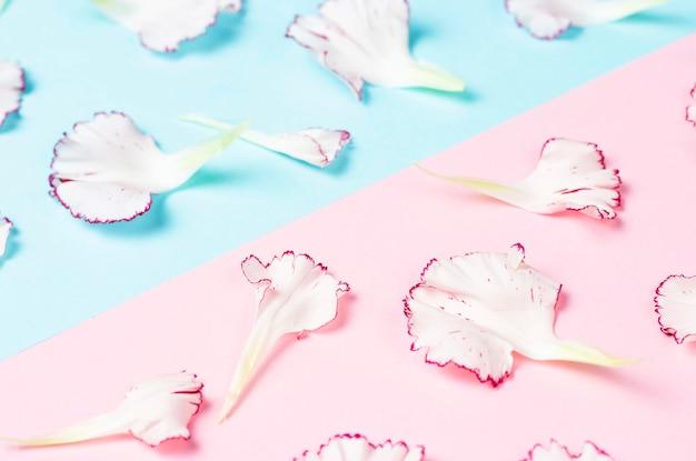 Een patroon van bloemblaadjes op blauwe en roze achtergrond