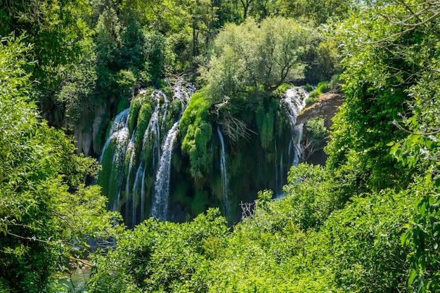 Een pittoreske waterval stroomt in een dicht groen bos.