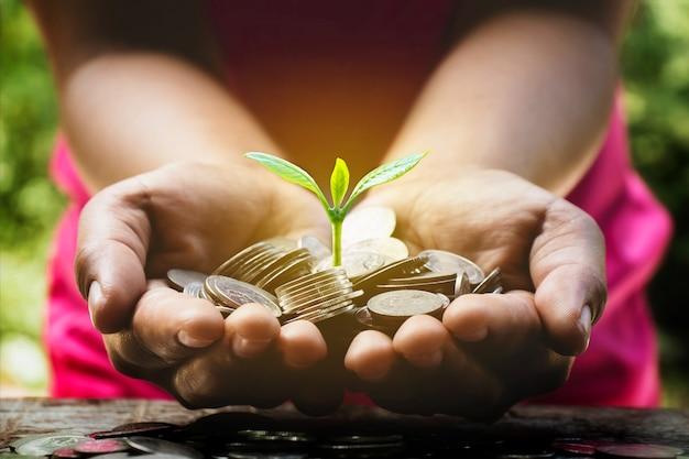 Een plant groeit uit een stapel munten in de handen van een jonge vrouw, financiële en investeringsideeën.