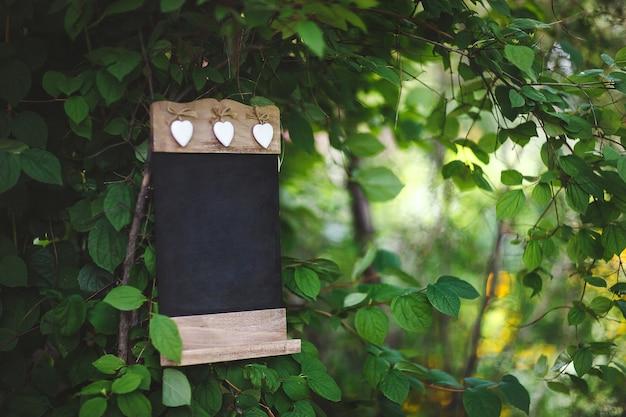 Een plek voor een trouwfotoshoot in de natuur met het decor