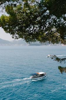 Een plezierboot en een wit jacht varen richting de kust met grote bomen.