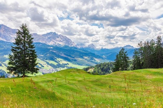 Een prachtig uitzicht op een vers gemaaide alpenweide.