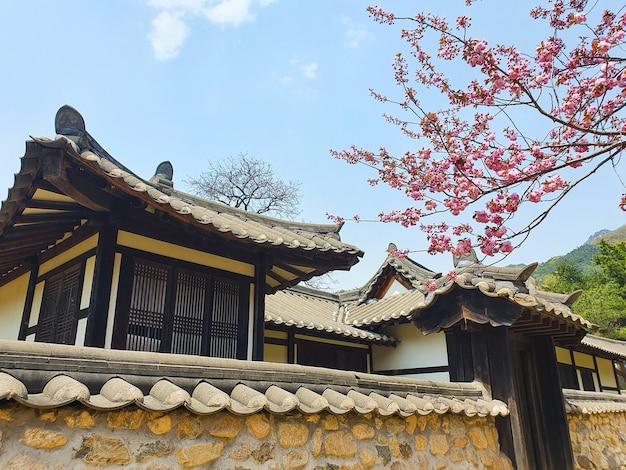 Een prachtige opname van gebouwen in japanse stijl onder een blauwe lucht