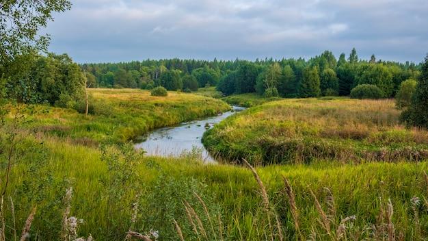 Een prachtige rivier in een veld in de buurt van het bos. zomer landschap. lemovzha, volosovsky district, leningrad regio rusland.