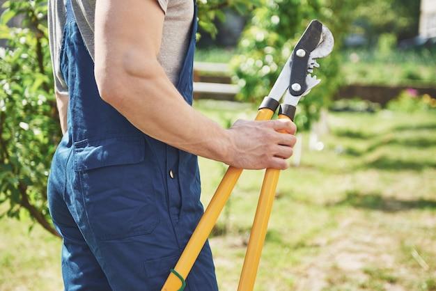 Een professionele tuinman aan het werk snijdt fruitbomen.