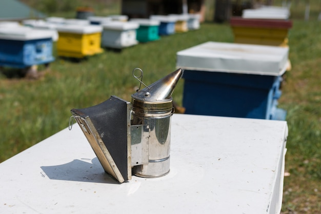 Een rij bijenkorven in een privé bijenstal in de tuin. honing industrie.