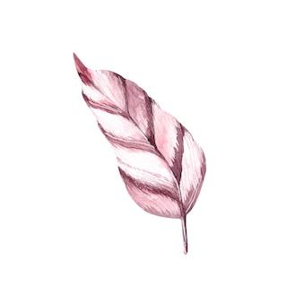 Een roze aquarelpen het enige element