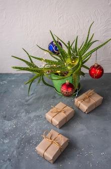 Een scharlaken cactus is versierd als een kerstboom, eronder zijn dozen met geschenken