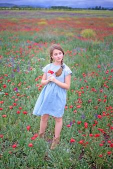 Een schattig meisje met staartjes in een blauwe jurk staat met klaprozen in haar handen in een bloeiend veld.