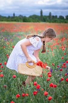 Een schattig meisje met staartjes in een witte jurk verzamelt bloemen in een papaverveld.