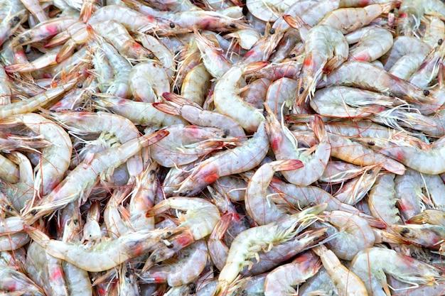 Een selectie garnalen op een vismarkt. verse zeevruchten in vismarkt. verse garnalen op ijs.