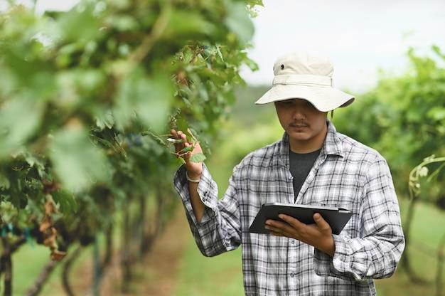 Een slimme boer gebruikt een computertablet terwijl hij tussen de boomgaard staat.