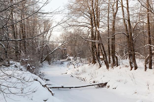 Een smalle rivier in het bos in de winter, de rivier is bedekt met dik ijs van bevroren water, winternatuur en vorst