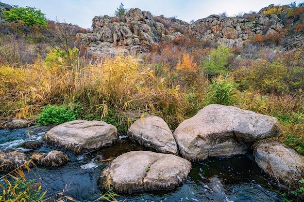 Een snelle en ondiepe en schone stroom loopt tussen gladde natte grote stenen omgeven door hoge droge brokken die zwaaien in de wind in het pittoreske oekraïne