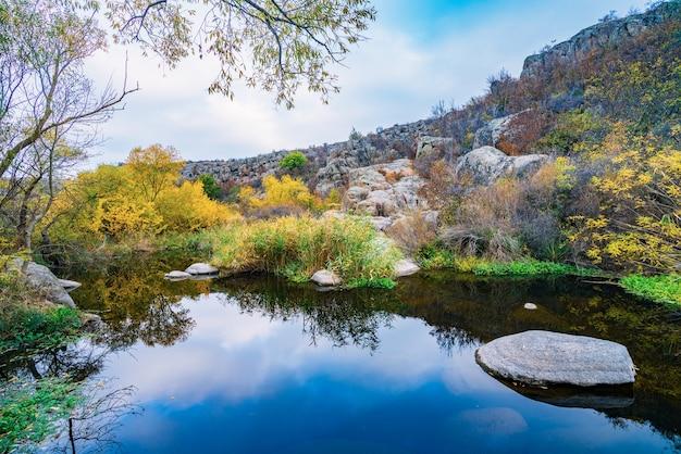 Een snelle en schone stroom loopt tussen gladde, natte grote stenen omringd door hoge droge brokken die in de wind zwaaien in het pittoreske oekraïne