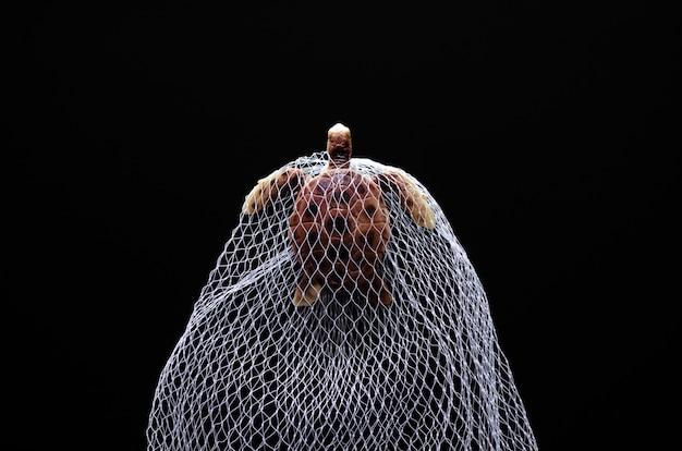 Een speelgoedmodel van een schildpad gevangen in een wit net op een zwarte achtergrond