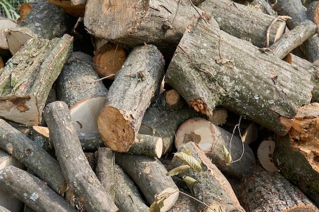 Een stapel droge gezaagde bomen. brandhout voor de oven of open haard.